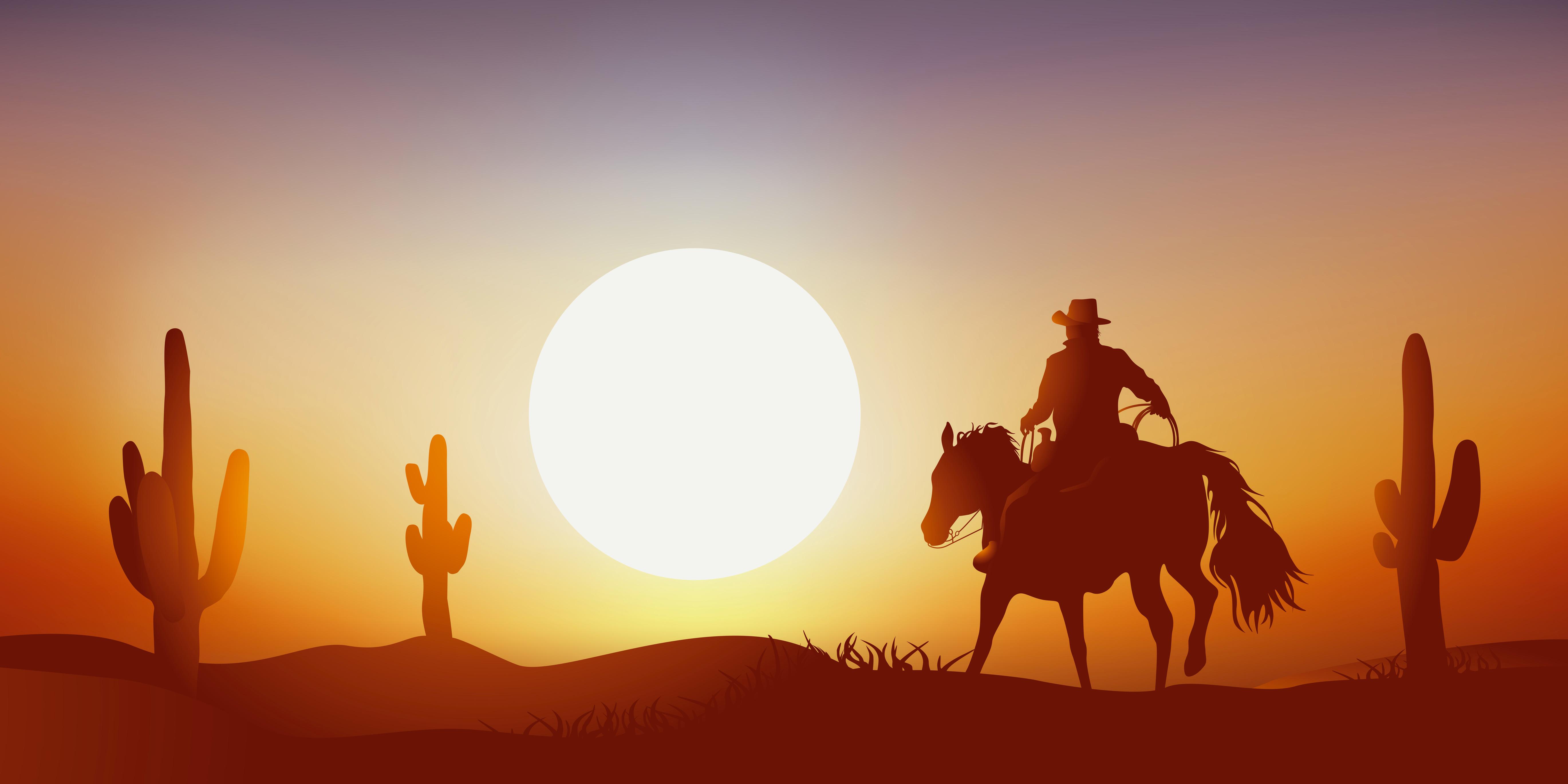 cow-boy - coucher de soleil - cheval - paysage, western, dsert - cactus